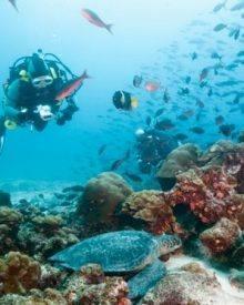 locais para mergulhar