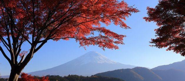 viajar japão