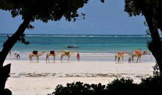 melhores destinos de África