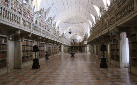 bibliotecas morcegos