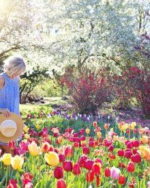 viajar na primavera